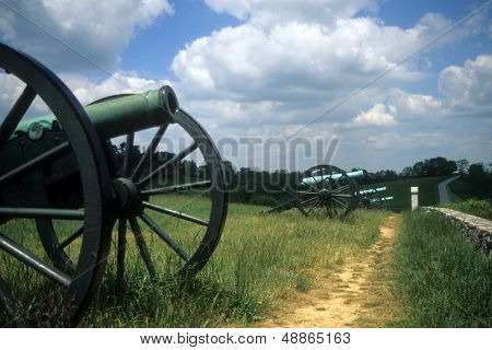 Napoleon Artillery Battery