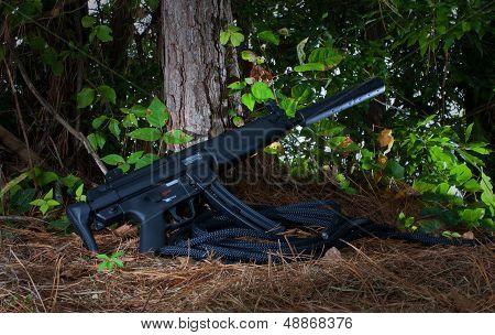 Dangerous Gun