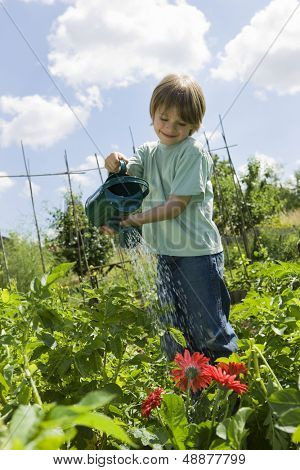 Happy young boy watering flowers in community garden