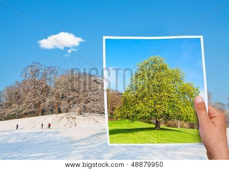 Memorable Picture Summer Vs Winter