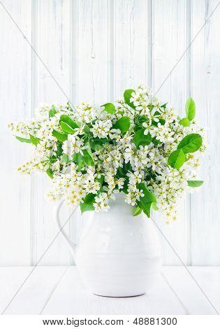 Bouquet Of White Bird Cherry Branches