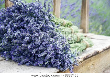 Lavender Flower Bouquets On A Wooden Old Bench