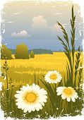 Sunny Landscape With Flower poster