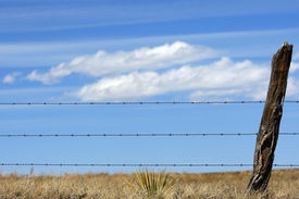 pic of barbed wire fence  - A rustic barbed - JPG