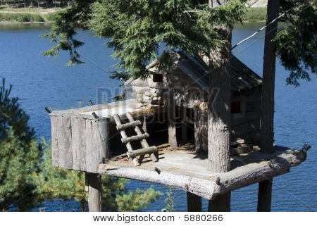 Animal Tree House
