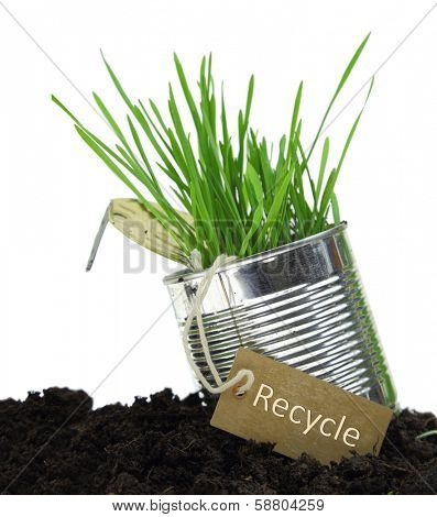 Can with recycling tag and growing grass isolated