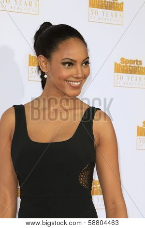 LOS ANGELES - JAN 14:  Ariel Meredith at the 50th Sports Illustrated Swimsuit Issue at Dolby Theatre on January 14, 2014 in Los Angeles, CA