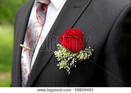 Rose In A Buttonhole Of The Groom Close Up