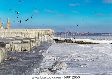 Encrusted Black Sea City Embankment And Gulls