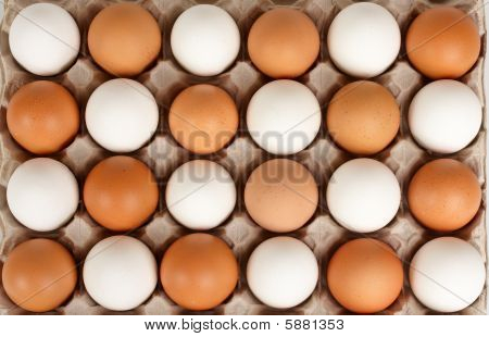 White and brown eggs lying in lattice