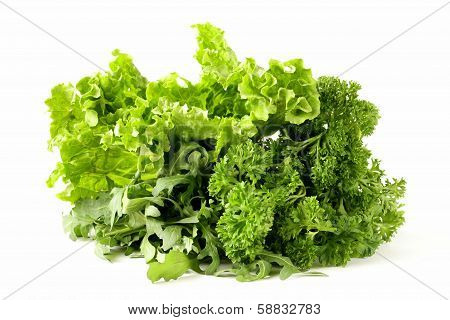 fresh green herbs mix on a white background