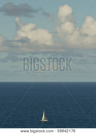 A small sail boat out to sea