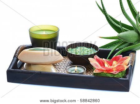 spa still life with aloe. isolated on white