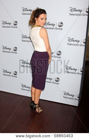 LOS ANGELES - JAN 17:  Camilla Luddington at the Disney-ABC Television Group 2014 Winter Press Tour Party Arrivals at The Langham Huntington on January 17, 2014 in Pasadena, CA
