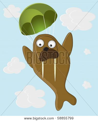 Walrus with a parachute
