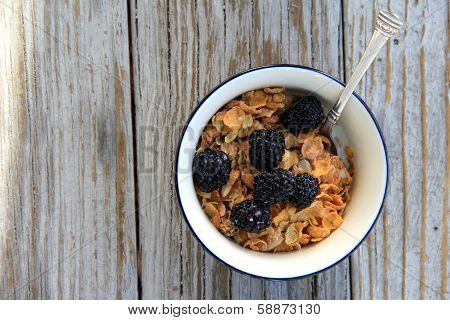 Cereal bowl with grain and berries