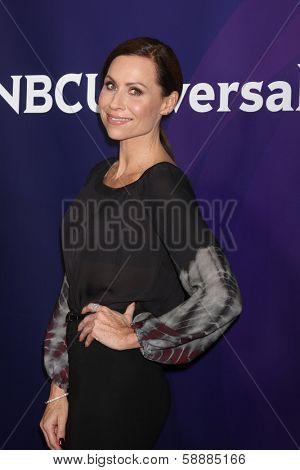 LOS ANGELES - JAN 19:  Minnie Driver at the NBC TCA Winter 2014 Press Tour at Langham Huntington Hotel on January 19, 2014 in Pasadena, CA