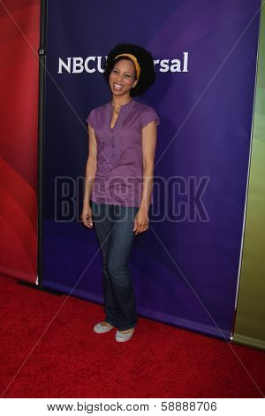 LOS ANGELES - JAN 19:  Dannisha Pratt at the NBC TCA 2014 Winter Press Tour at The Langham Huntington Hotel on January 19, 2014 in Pasadena, CA