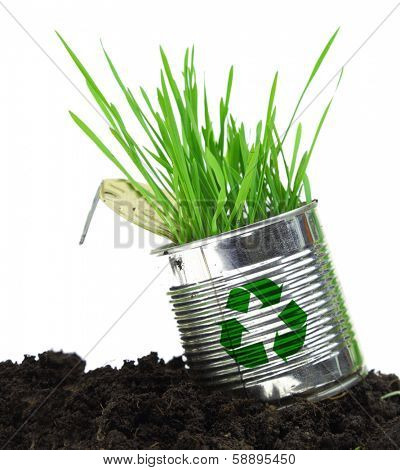 Can with recycle sign and growing grass on soil