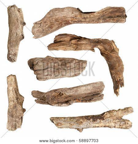 Macro dry branches