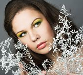 picture of cold-shoulder  - Young woman with winter twig - JPG