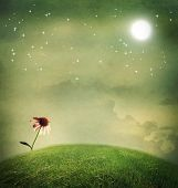 stock photo of moon-flower  - One echinacea flower on a fantasy hilltop under the moon - JPG