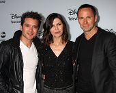 LOS ANGELES - JAN 17:  Dominic Zamprogna, Finola Hughes, William deVry at the ABC TCA Winter 2014 at