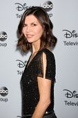 LOS ANGELES - JAN 17:  Finola Hughes at the Disney-ABC Television Group 2014 Winter Press Tour Party