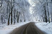 stock photo of slippery-roads  - Mountain road in winter - JPG