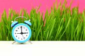 "image of puberty  - ""Biological"" clock concept, with grass and pink background - JPG"