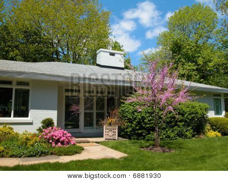 Ranch bungalow with spring blossoms
