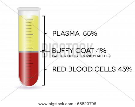 Test Tube With Blood Cells, Plasma, Buffy Coat And Red Blood Cells.