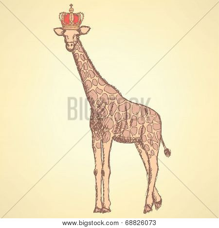 Sketch Giraffe In Crown,  Background
