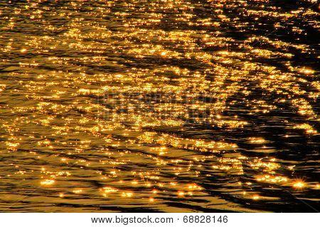 Scintillate Sunlight,