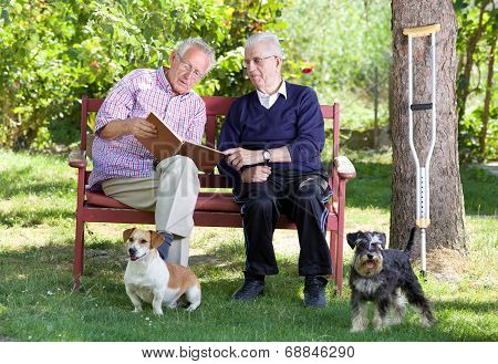 Seniors With Dogs