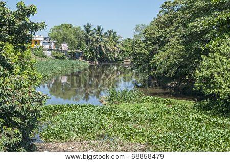 River In Las Choapas, Veracruz