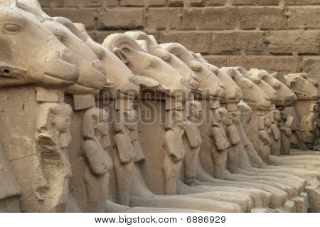 Ram-headed Sphinx Statues In Line Inside Temples Of Karnak