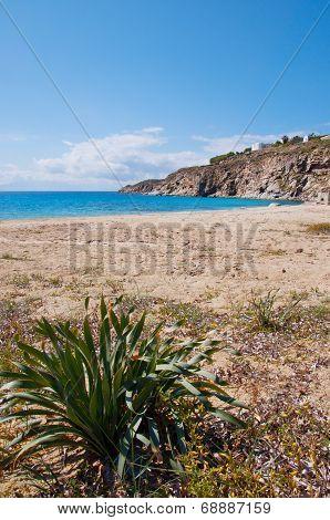 Kalo Livadi In Mykonos