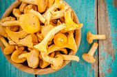 image of chanterelle mushroom  - organic fresh chanterelle mushrooms on a wooden background - JPG