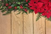 picture of greenery  - Poinsettia flower border on oak background with holly and winter greenery - JPG