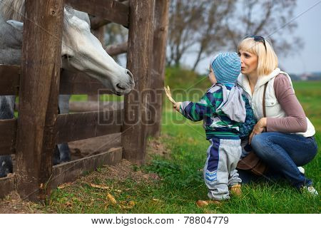 Mother With Two-year Child Feed Horse