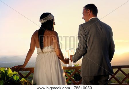 Groom And Bride Toasting On A Terrace Eye Contact Rear View