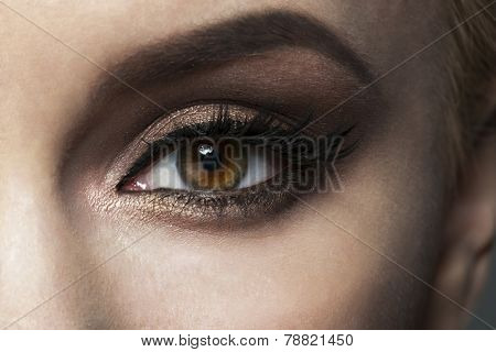 Closeup image of beautiful woman eye with fancy bright makeup.
