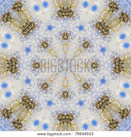 Pattern Of Overblown Dandelion Heads