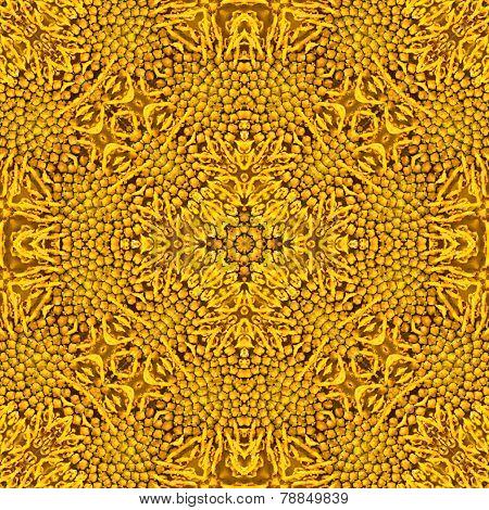 Pattern Of Macro Sunflower Stamens