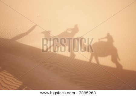 Camel Shadows On  Sahara Sand.