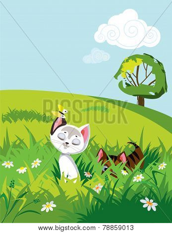 Cats in grass