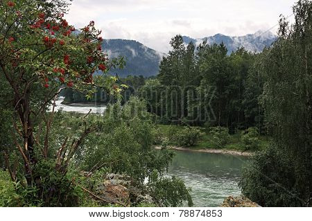 The mountain river Katun.