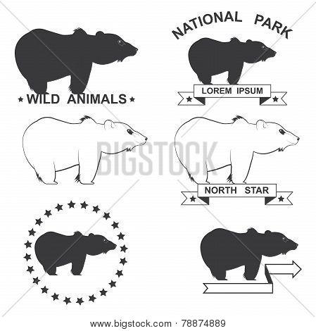 set of icons with the image of a bear