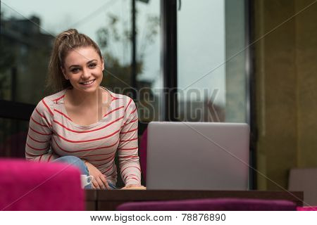 Smiling Young Student In Cafe Using Laptop